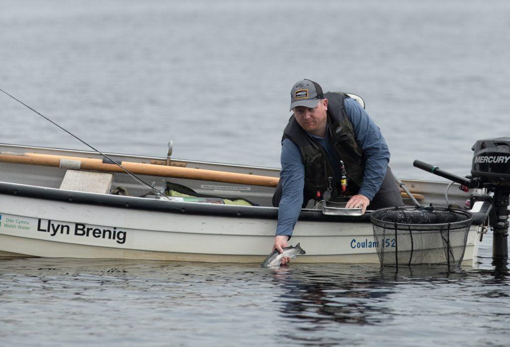 Wayne Jones putting back a Llyn Brenig rainbow trout