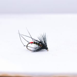 Black pearly hopper with red butt