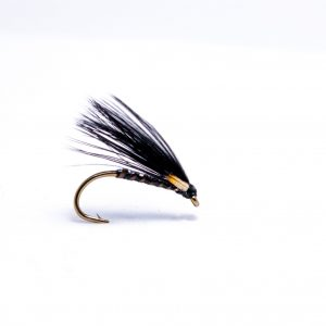 Black quill corm with pearl back scaled