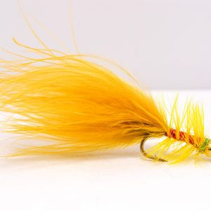 goldhead golden olive damsel scaled