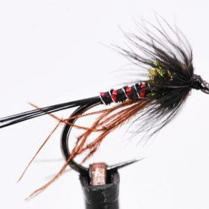 black leggy cruncher scaled