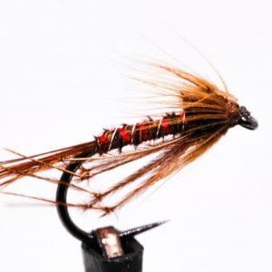 red leggy cruncher scaled