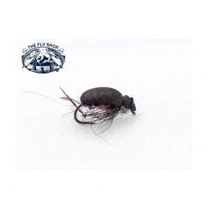 barbless black foam beetle scaled