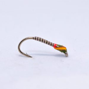 rutland olive red glo bright quill buzzer scaled