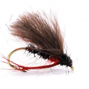 bibio heather fly