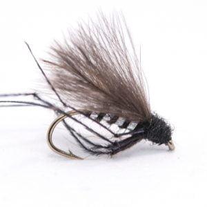 black flatback hooper silverholo rib